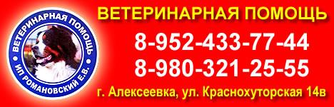 Ветеринарная помощь в Алексеевке.